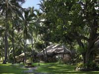 Gaia Oasis Bali