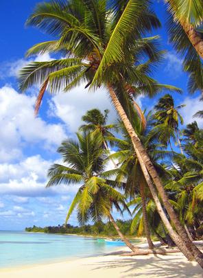 Der paradiesische Strand von La Palmilla trotzt jeglicher Beschreibung