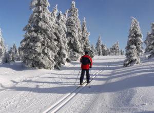 Egal ob Langlauf oder Alpin, sich vorher fit zu machen und zu informieren ist vor jedem Skiurlaub ratsam