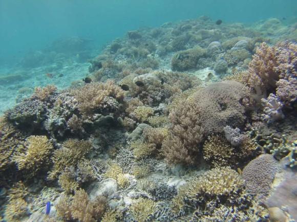 Gili Inseln Lombok