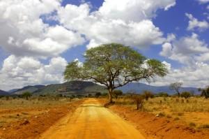 Camping Safari Namibia