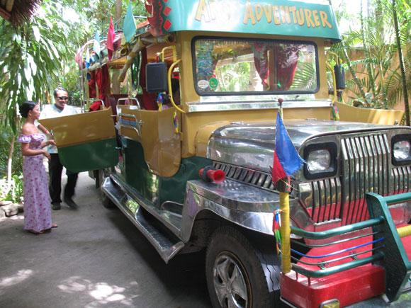 Cocogrove Bus