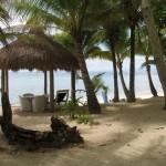 Palmenstrand im Coco Grove Beach Ressort