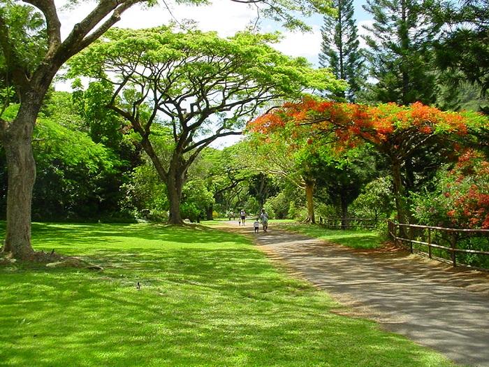 Botanischer Garten Hawaii