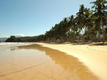 Strand tropische Insel Hawaii