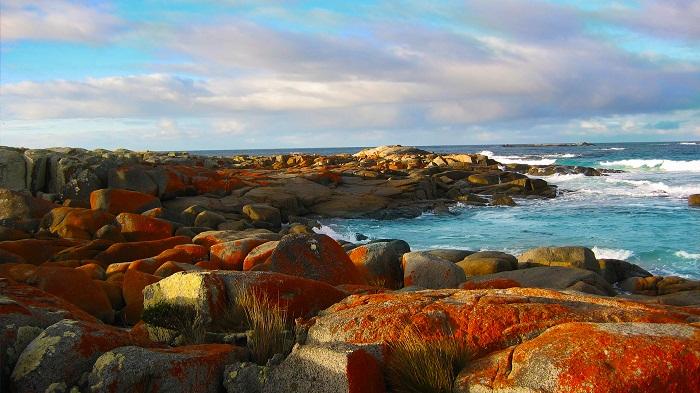 Bucht Tasmanien Australien