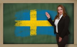 Schulsystem in Schweden